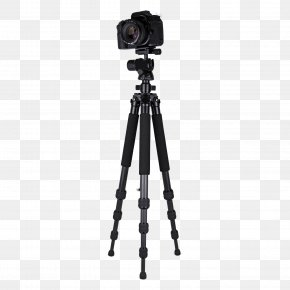 Video Camera Tripod Image - Tripod Video Camera Ball Head PNG