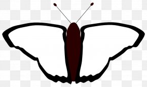 Butterfly Pictures Black And White - Butterfly Coloring Book Black And White Line Art Clip Art PNG