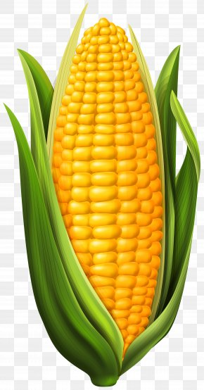Corn Clip Art Image - Corn On The Cob Maize Clip Art PNG