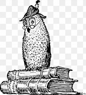 History Owl Cliparts - A Little History Of Philosophy A Little History Of The World Amazon.com A History Of Western Philosophy Audible Inc. PNG