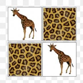 Giraffe - Giraffe Big Cat Terrestrial Animal Wildlife PNG