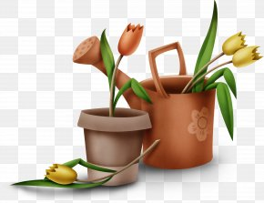 Spring Planting Ready - Cut Flowers Alternative Health Services Product Design Medicine Flowerpot PNG