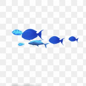 Blue Fish - Blue Common Carp Fish PNG