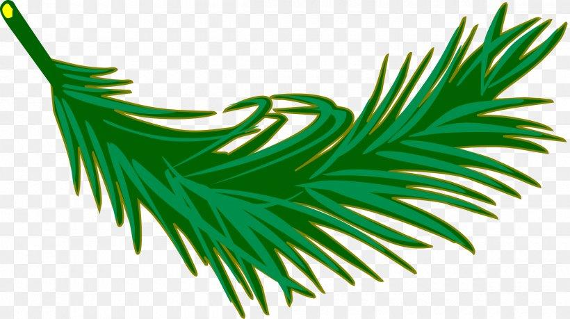 Leaf Arecaceae Palm Branch Frond Clip Art, PNG, 2400x1346px, Leaf, Arecaceae, Arecales, Fern, Frond Download Free