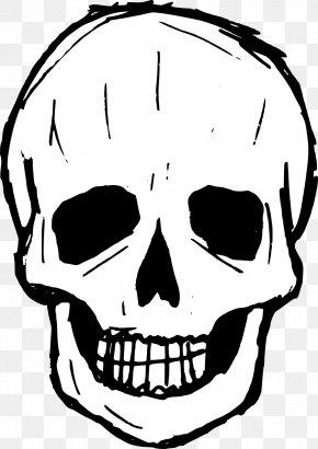 Skull - Skull Drawing Clip Art PNG