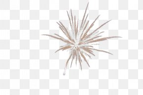 Silver Fireworks - Download Silver Computer File PNG