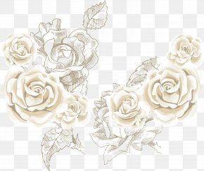 White Roses Roses Background Vector Sea - Beach Rose Flower Clip Art PNG
