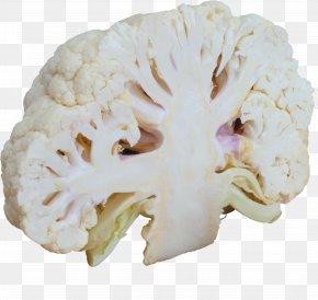 Cauliflower - Cauliflower Broccoli Cabbage Vegetable Food PNG