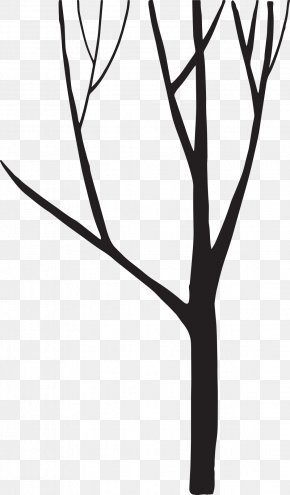 Tree Silhouette - Black And White Silhouette Tree PNG