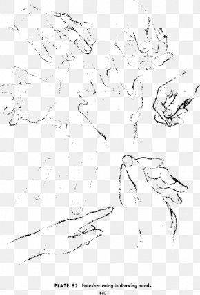 Hand Sketches - Drawing The Head And Hands Art Sketch PNG