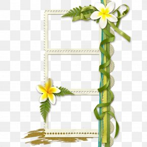 Floral Design Creative Floral Border Art - Floral Design Picture Frame Flower PNG