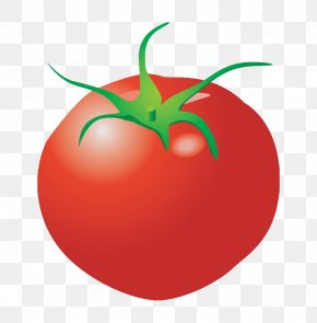Cartoon Vegetables Tomatoes - Plum Tomato Cartoon Clip Art PNG