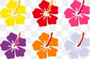 Hawaiian Cliparts - Hawaii Flower Drawing Clip Art PNG