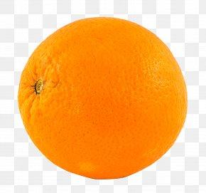 Orange Clementine - Blood Orange Lemon Mandarin Orange Tangerine PNG