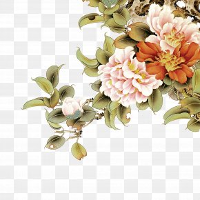 Peony - Moutan Peony Floral Design Wall PNG