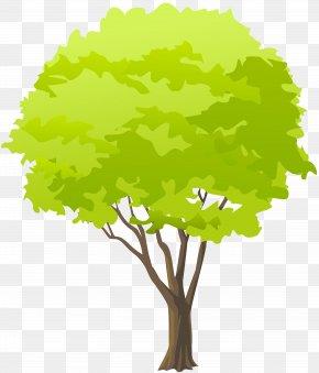 Green Tree Clip Art - Clip Art PNG