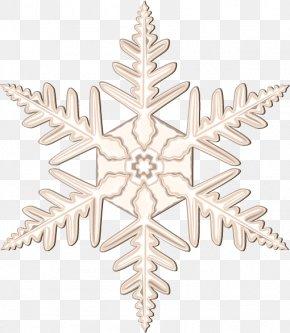Christmas Vector Snow Petals - Snowflake Euclidean Vector PNG