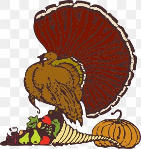 Dead Turkey Clipart - Thanksgiving Florida's Kitchen Turkey Meat Pixabay Christmas PNG