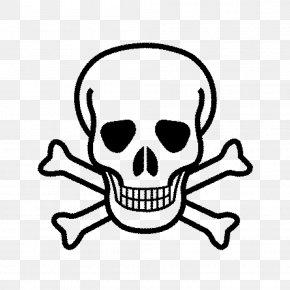 Skull - Skull And Crossbones Human Skull Symbolism Clip Art PNG