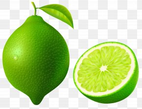 Lime - Key Lime Pie Lemon Meringue Pie Clip Art PNG