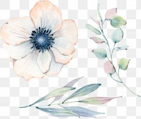 Birthday - Watercolor: Flowers Watercolor Painting Floral Design Illustration Greeting & Note Cards PNG