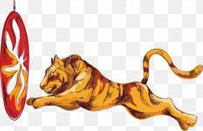 Vector Painted Circus Lion Jump Through Hoops - Tiger Lion Circus Illustration PNG
