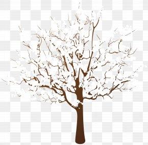 Tree - Tree Winter Branch Clip Art PNG