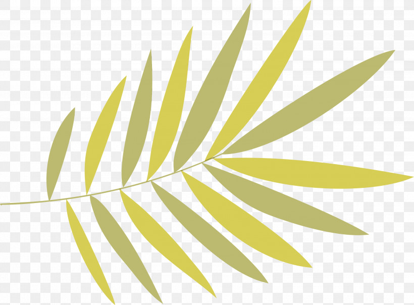 Leaf Plant Stem Grasses Yellow Font, PNG, 3000x2210px, Watercolor, Biology, Grasses, Leaf, Line Download Free