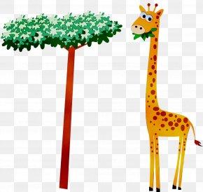 Northern Giraffe Wildlife Safari Neck Zoo PNG