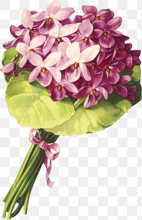 Lavender Flower - Cut Flowers Floral Design Floristry Flower Bouquet PNG