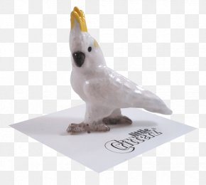 Bird - Sulphur-crested Cockatoo Bird Animal Figurine PNG