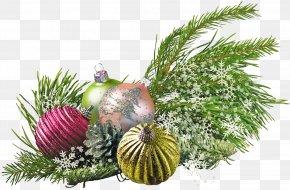 Christmas - New Year Tree Christmas Ornament Holiday Santa Claus PNG