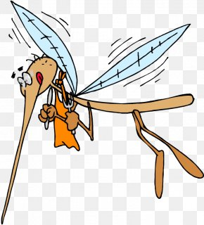 Mosquito - Mosquito Viral Hemorrhagic Fever Japanese Encephalitis Animal Bite Disease PNG
