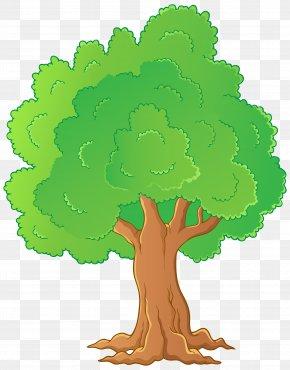 Tree Transparent Clip Art - Tree Clip Art PNG