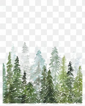 Watercolor Woods - Watercolor Trees PNG