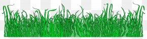 Lawn - Lawn Clip Art PNG