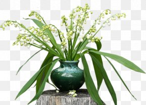 Lily Of The Valley - Lily Of The Valley 1 May Floral Design PNG