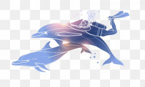 Dolphin And Diver - Underwater Diving Illustration PNG
