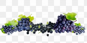 Sultana Grape Seedless Fruit Blueberry Bilberry PNG