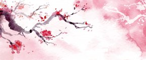 Cherry Blossoms - Download Cherry Blossom Watercolor Painting PNG
