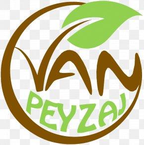Clip Art Leaf Brand Logo Plant Stem PNG