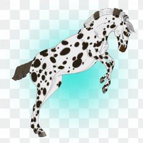 Horse - Dalmatian Dog Horse Dog Breed Digital Art DeviantArt PNG