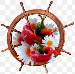 Ship - Ship's Wheel Sailing Ship Boat PNG