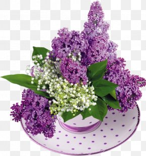 Lily Of The Valley - Common Lilac Lily Of The Valley Flower Garden PNG