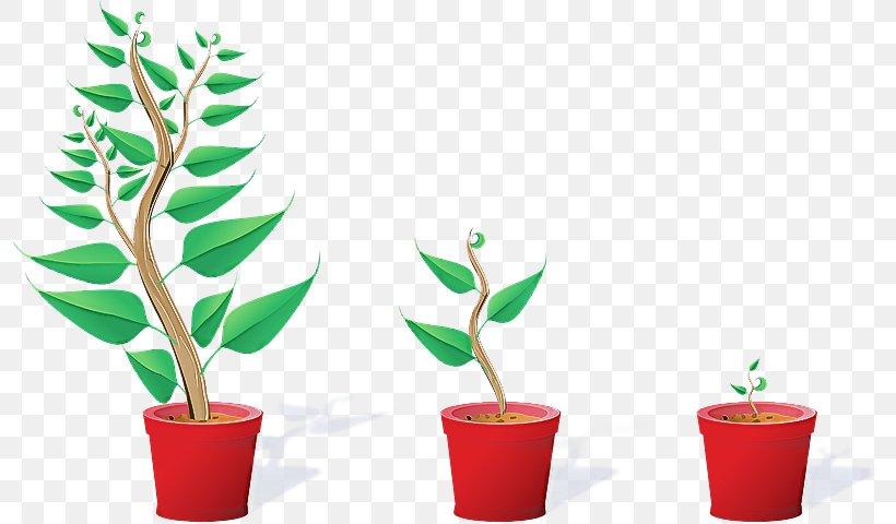 Flowerpot Leaf Plant Flower Houseplant, PNG, 796x480px, Flowerpot, Flower, Houseplant, Leaf, Plant Download Free