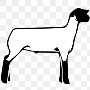 Sheep - Sheep Boer Goat Cattle Clip Art Vector Graphics PNG