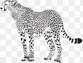 Cheetah Silhouette Transparent Clip Art Image - Cheetah Felidae Leopard Clip Art PNG