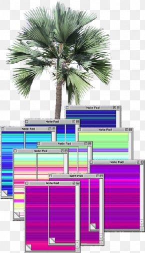 Tree - Arecaceae Tree Rendering PNG