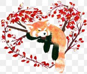 Cartoon Raccoon - Red Panda Giant Panda Raccoon Clip Art PNG
