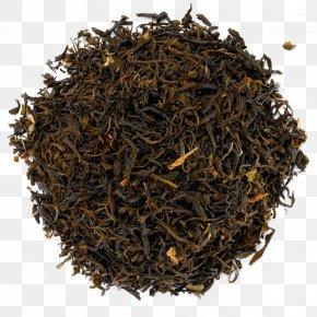 Tea - Dianhong Oolong White Tea Nilgiri Tea PNG